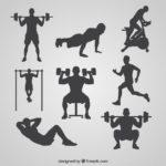 運動が如何に重要かわかる!筋肉の役割を解説!