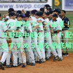 【野球ファン必見!】プロ野球中継のネット配信人気おすすめ5選を徹底解説!
